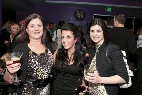 Lisa Villani, Noelle Nicolaou and M. Amy Villani