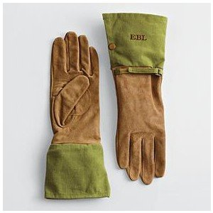 Gardening Gloves -- May LIFE.jpg.jpe