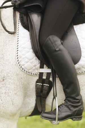 horsefeature00101.jpg.jpe