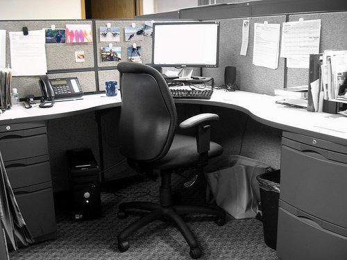office2.jpg.jpe