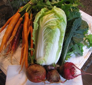 Farm fresh veggies from Gottschells CSA