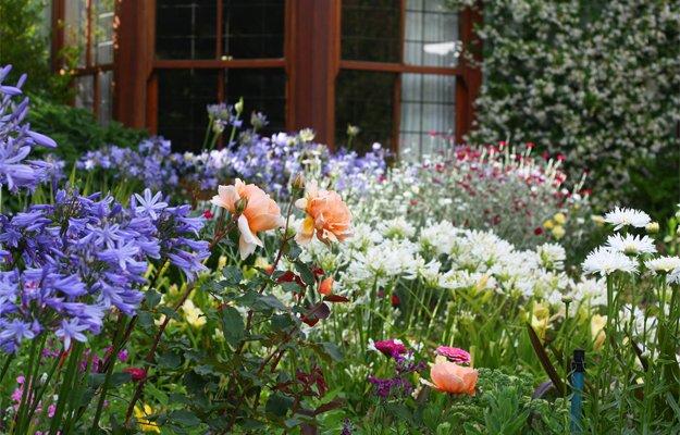 Garden7.jpg.jpe