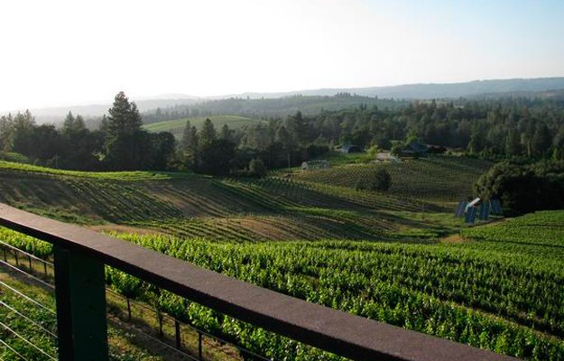 mother-winery.jpg.jpe
