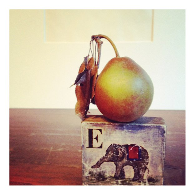 pear-and-elephant-copy.jpg.jpe