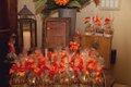15382-JanetAndrewPicture-weddingDISK2039.jpg.jpe