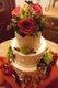 15384-JanetAndrewPicture-weddingDISK2047.jpg.jpe