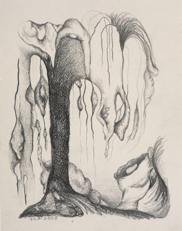 16223-Artorganicescape-willow.jpg.jpe