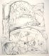 16221-ArtOrganicEscape-WhereAmI16x18ingraphiteonpaper.jpg.jpe