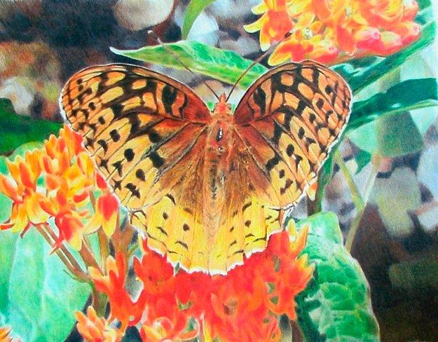 22051-Garden-Butterfly---Jeffrey-M-Green.jpg.jpe
