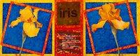 25379-JamesDePietroDeconstructionNo11-Iris12.jpg.jpe