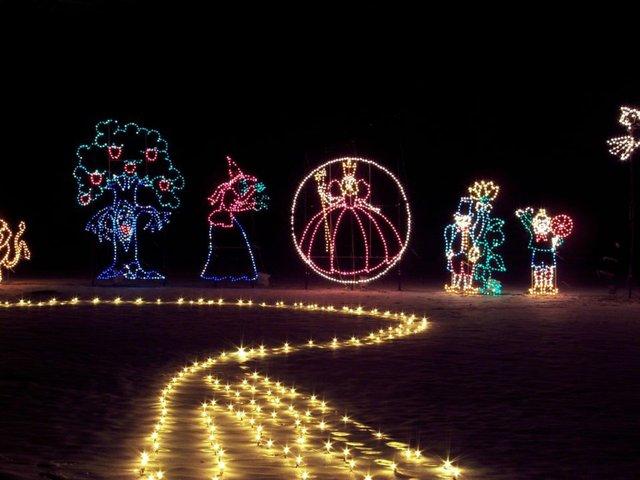 Lights in the Parkway (1).jpg.jpe