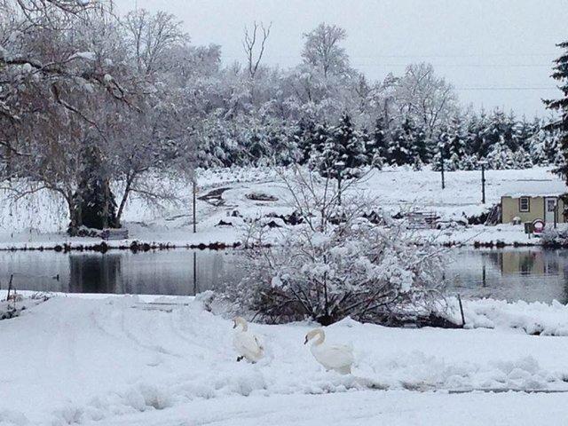Pine Brook Hollow(1).jpg.jpe
