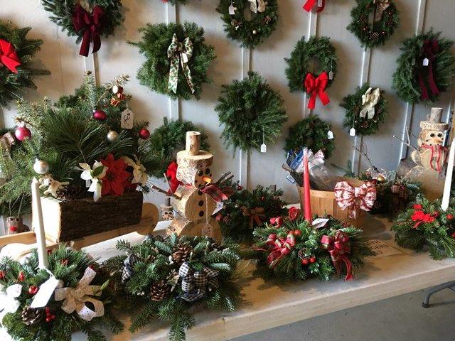 4 Lehigh Valley Christmas Tree Farms To Get The Perfect Tree  - Becks Christmas Tree Farm