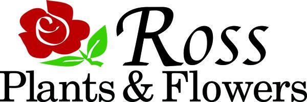 RossPlantsFlowers-logomock