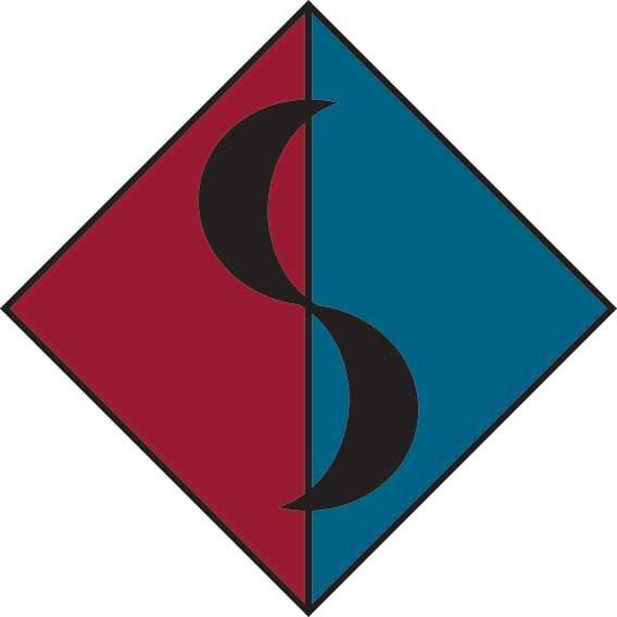 SalivonchikDMDPC-logomock.jpg