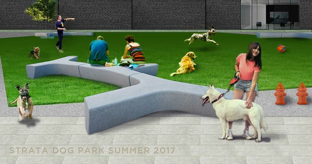 STRATA East Dog Park rendering.jpg