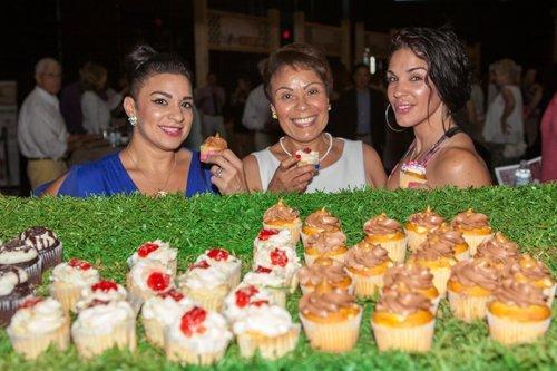 botlv cupcakes.jpg
