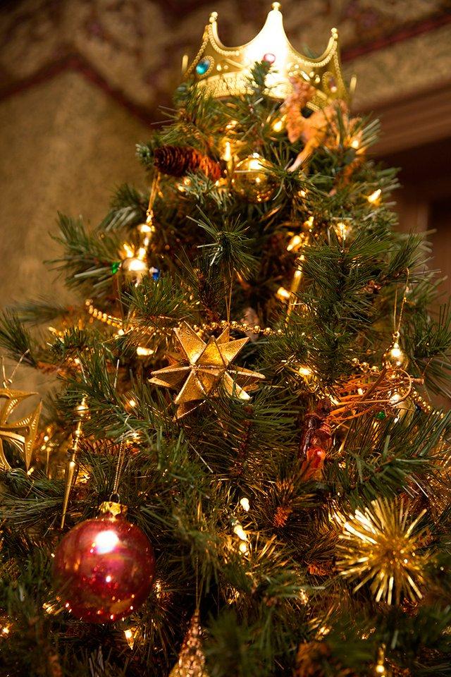Christmas-Trees-19.jpg