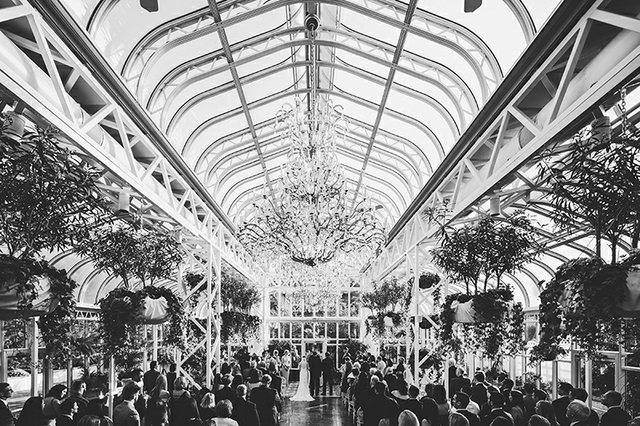 Black and white crowd shot of wedding reception in formal greenhouse with tiered glass ceiling and parquet floors