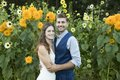 Photo of bride and groom in field of sunflowers