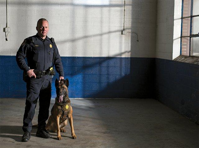 Harley, Patrol K9, Allentown Police Department
