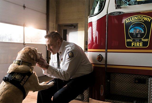 Judge, Arson K9, Allentown Fire Department