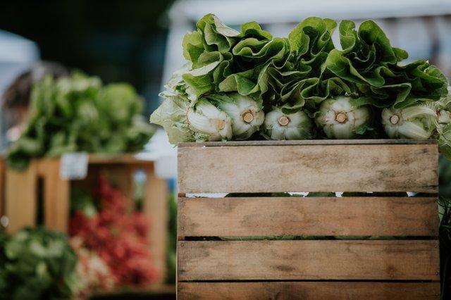 Best Seasonal Farmers' Market, Easton Farmers' Market-3.jpg