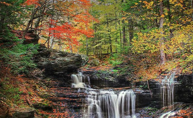 Ricketts Glen Fall.jpg