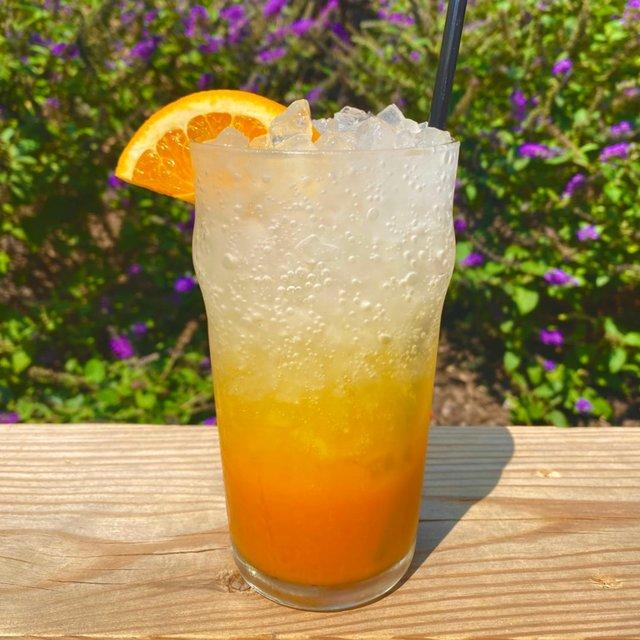 shelby-orange-delight.jpg